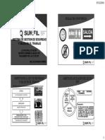 4987 Sistema de Gestion de Sst Sunafil