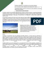Cosmovisión Del Pueblo Mapuche Nataniel