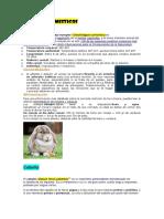 Animales Domesticos Informacion
