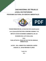Tesis Doctorado - Abner Obregón Lujerio