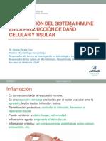 Clase 9 Lesion Celular y Tisular Final