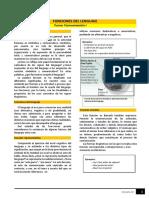Lectura Módulo 02 - Funciones Del Lenguaje y Tipología Textual