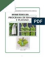 itbabanoypp004 (1).pdf
