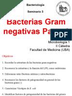 Bacterias Gram - 1