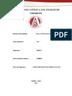 Resumen-Del-MIMI.pdf
