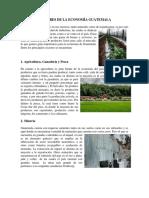 Sectores de La Economía Guatemalteca
