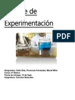 Informe de Experimentación