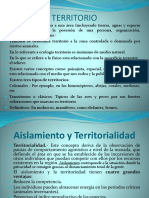 TERRITORIO Clase 8 PowerPoint