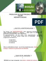 Biogas II
