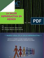 104638252-Estrategia-de-Riesgo-en-La-Salud-Reproductiva-y-Perinatal.pptx