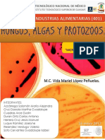 IV. Ev 2 Catálogo.pdf