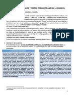 7 P FACTOR DETERMINANTE Y FACTOR CONDICIONANTE DE LA POBREZA.docx