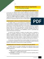 Lectura - Análisis del ambiente interno de una organización (1).pdf