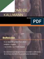 SX KALLMANN