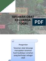 TOGA 1