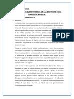 INFORME N°1 - SUPERVIVIENCIA DE LAS BACTERIAS EN EL AMBIENTE NATURAL