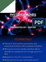 16576337-PHYTOHORMONES.ppt
