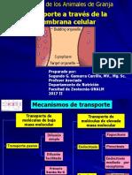 1-2 Ppt Transporte a Traves de La Membrana Celular 2017 II