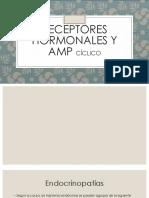 Receptores Hormonales y Amp Cíclico