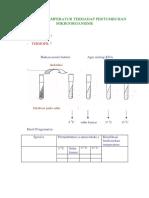 transparanmikro.pdf