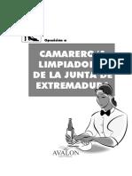 TEMARIO Limpiador