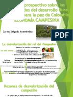 Economia Agraria.pptx