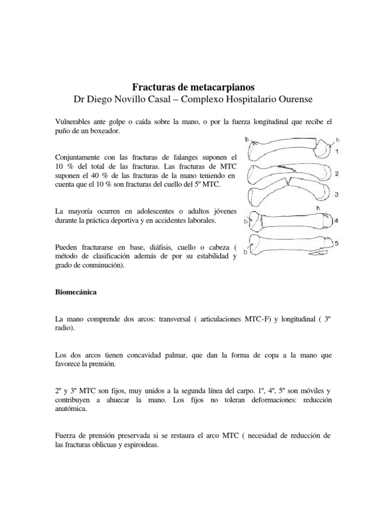 Novillo Fracturas de Metacarpiano