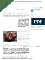 ¿Es Posible Alimentar a La Población Mundial Con Comida Orgánica_ __ Alimentación Orgánica Al Alcance de Todos, Un Debate Abierto