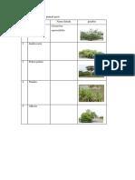Tabel 2 Vegetasi pada gumuk pasir.docx