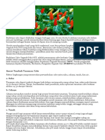 Cara Baru Budidaya Cabe Organik Dengan Pola HC1.docx