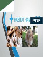 HABITAT HAIWAN.pptx
