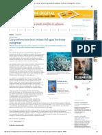 Las Praderas Marinas Retiran Del Agua Bacterias Patógenas _ Noticias _ Investigación y Ciencia