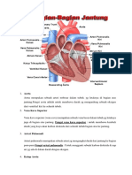 Jantung Normal