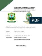 cuenca hidrografica de la selva.docx Hidrologia
