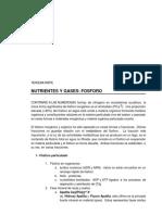 p3-fosforo.pdf