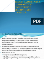 Schema CURS Cariologie VI