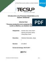 Informe Final IPIGA Ultimitooo