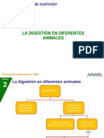 la digestion en animales.ppt