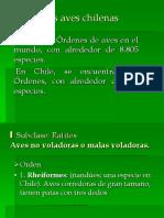 Especialidad AVES
