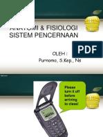 1. Anfis Sistem Pencernaan