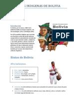 Culturas Indígenas de Bolivia