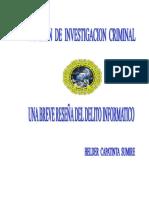 Documentos Del Delito Informatico