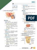 Materi78 Repro&Imun