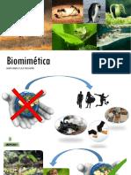Biomimética Aplicada Al Diseño