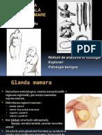 Patologie San