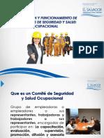 Mtps Modulo Vi Organizacion y Funcionamiento de Los Comites de Seguridad y Salud Ocupacional