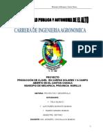 PROYECTO DE clavel.doc