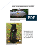 Acupontos - Neurologia veterinária.pdf