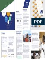 IDA General FactsheetFR