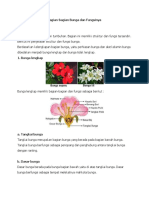 Bagian Dan Struktur Bunga